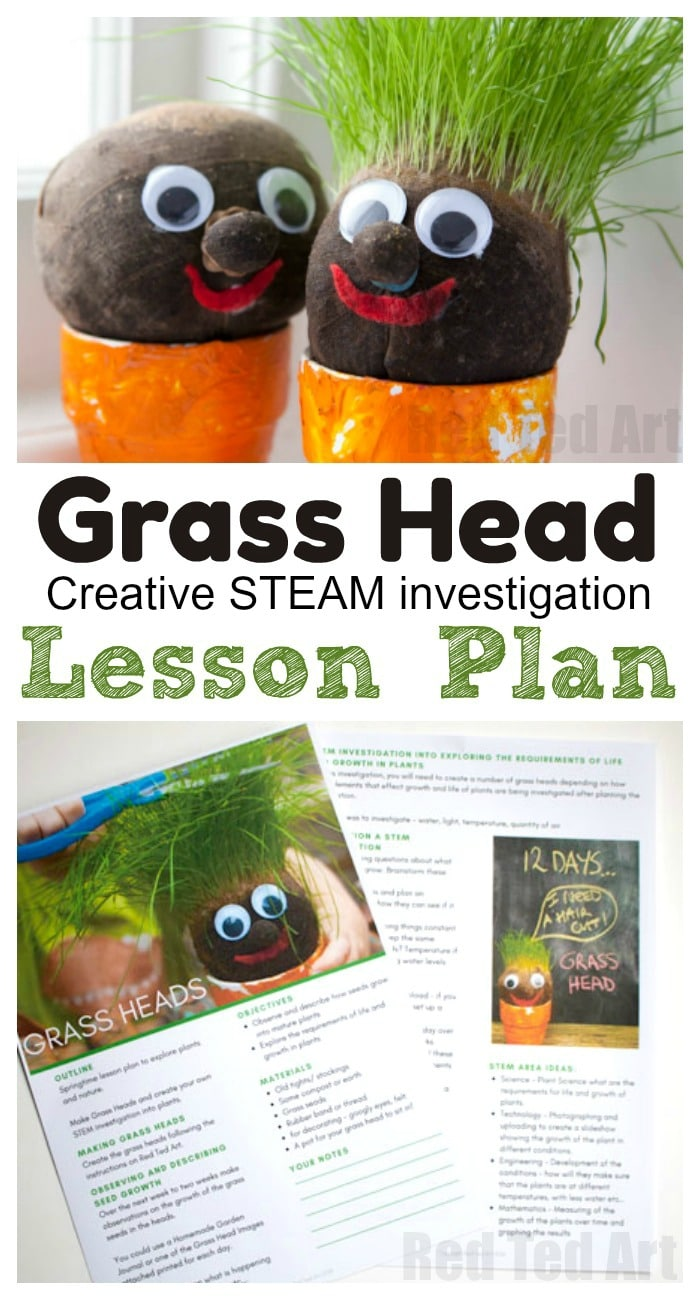 Grass Head Lesson Plan - a Creative STEAM Investigation for the classroom this Spring and Summer. A great prediction and obversation craft that will teach the kids about basic plant growth AND is fun to make! #grassheads #lessonplans #spring #steam