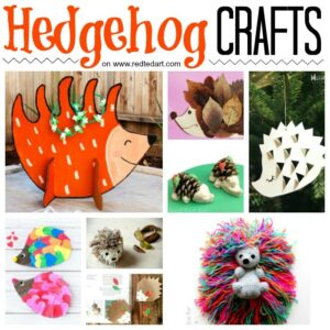 Easy Hedgehog Crafts for Kids on redtedart!