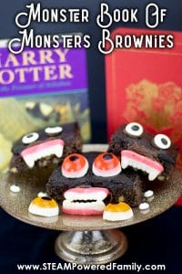 Easy Harry potter party food. DIY Harry Potter Party Ideas - How to host a Harry Potter Birthday Party or host a Harry Potter Halloween Party! #harrypotter #halloween #birthday #party