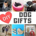 DIY Gifts for Dogs and Dog Lovers!