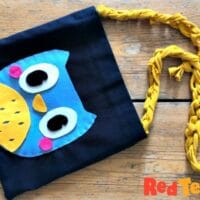 Recycled Owl Purse