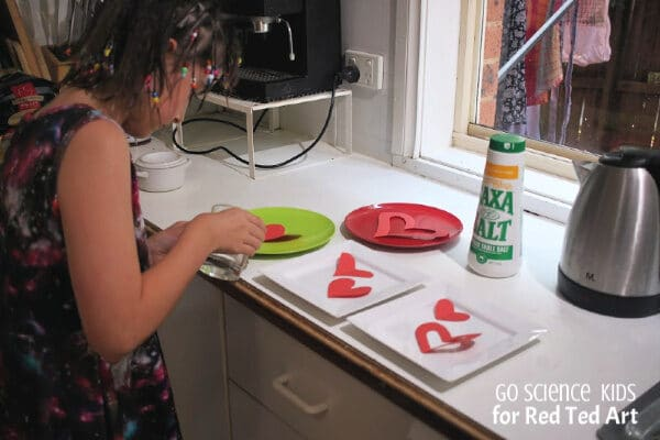 Salt Crystal Hearts - Easy STEAM Activities for Kids this Valentine's!