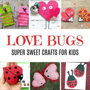 Valentine's Day Ideas - Love Bug Crafts