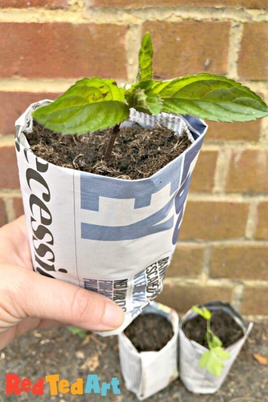 newspaper plant pot diy