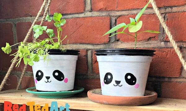painted plant pots