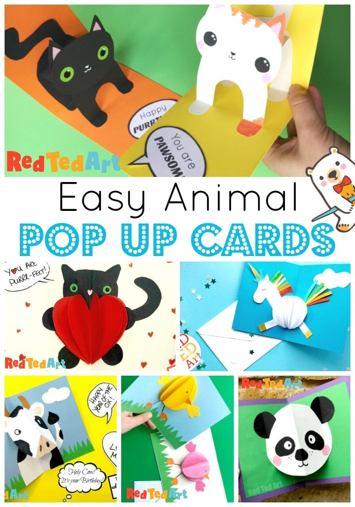 Animal Pop Up Cards