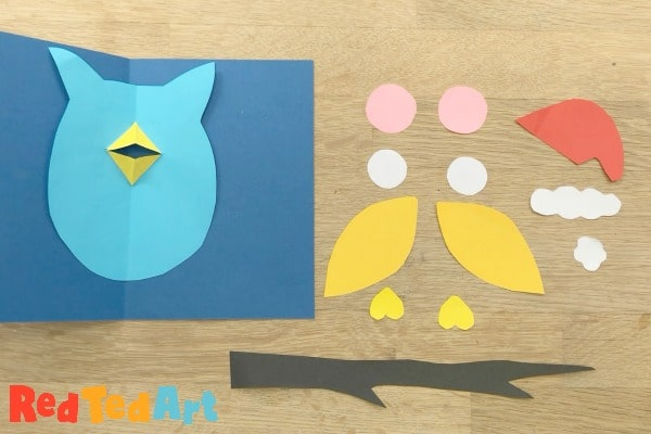 owl parts