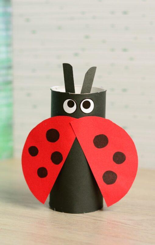 easy TP Roll Ladybug