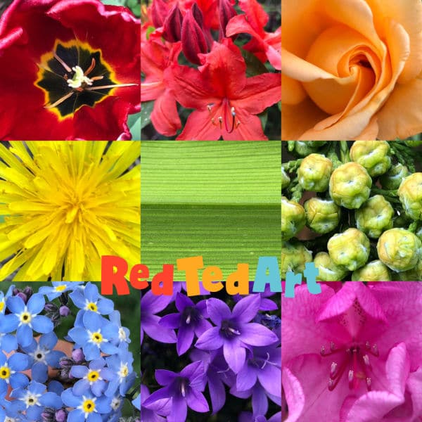 Create our own rainbow nature scavenger hunt!