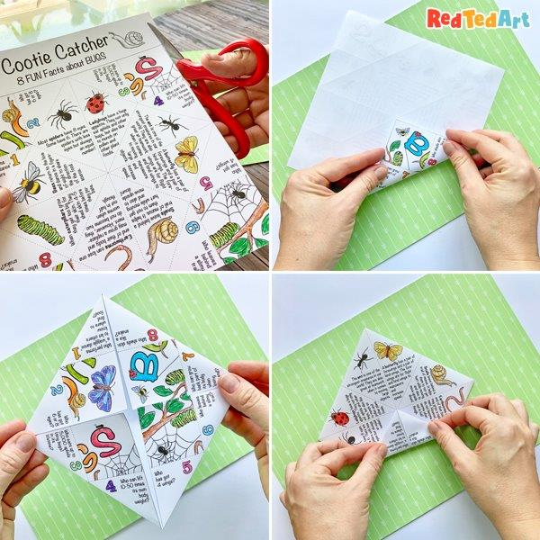 fold the cootie catcher