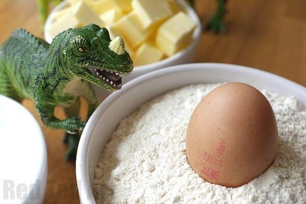 dinosaur & egg